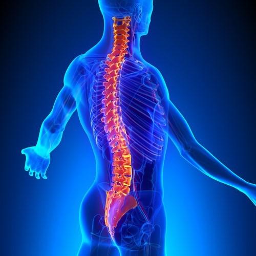 Yoga con ejercicios para la columna vertebral – Clase competa
